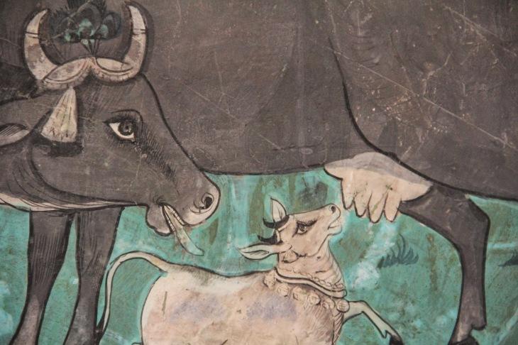holy cow.JPG