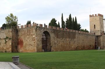 mura leone